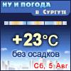 Ну и погода в Сургуте - Поминутный прогноз погоды